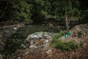 Rubbish and raw sewage in the Thengaithittu estuary
