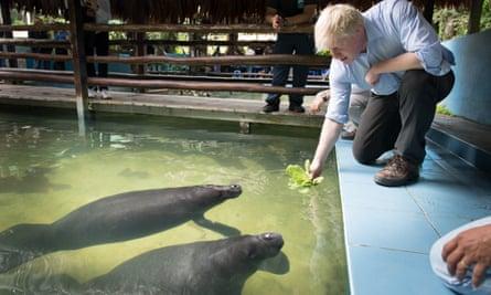 Boris Johnson meets manatees at an animal rescue centre near Iquitos.