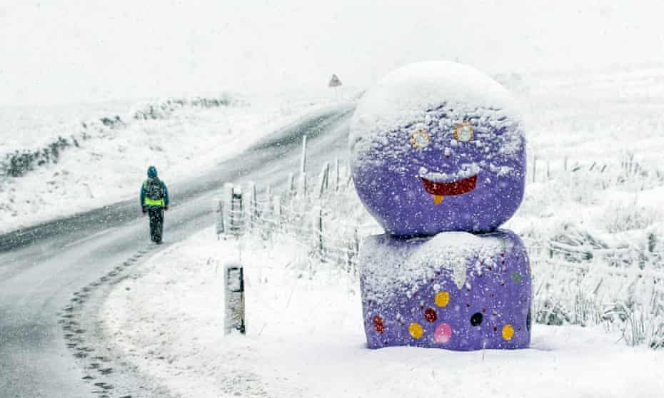 A person walks past decorated bales of hay in snowy conditions in the Yorkshire Dales