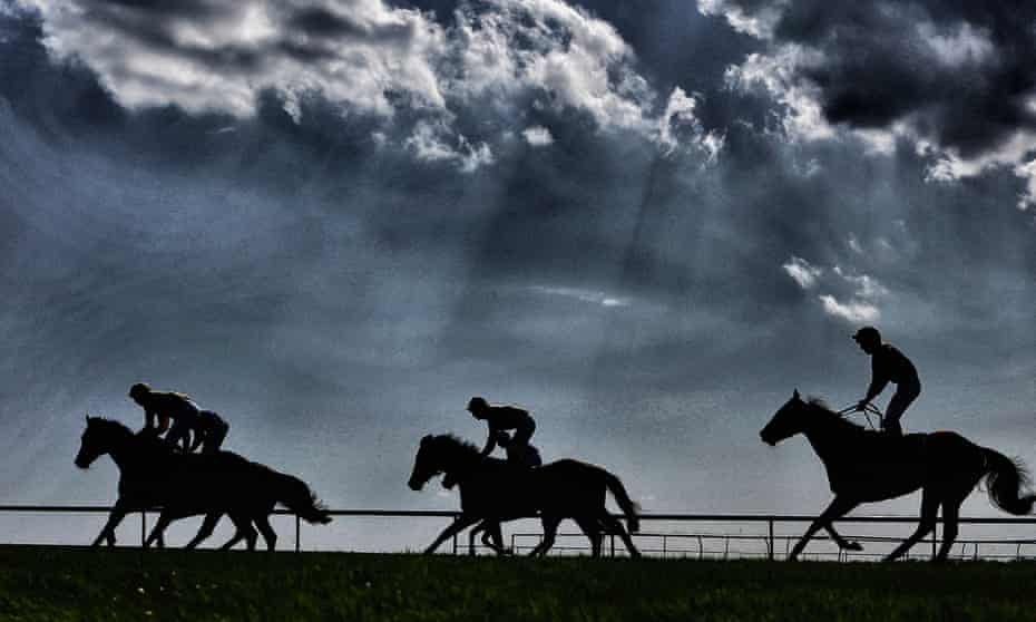 Horses on the gallops at Newmarket, the Flat's 'headquarters' and Britain's centre for thoroughbred breeding.