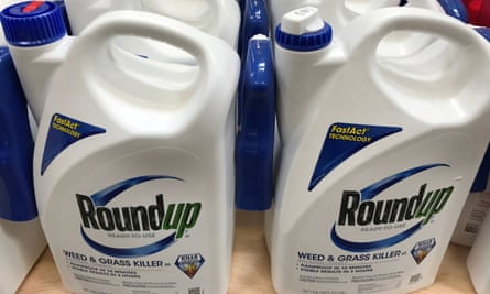 Monsanto's weedkiller Roundup, one of the world's most popular herbicides, may cause cancer.