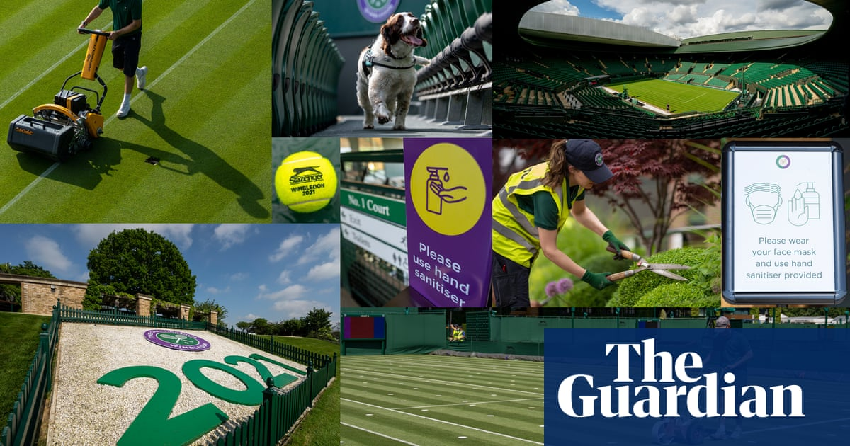 Wimbledon's greatest show on turf promises to bring back joy of summer