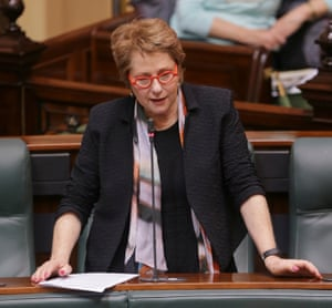 Victorian independent member for Shepparton Suzanna Sheed speaks in the Legislative Assembly.