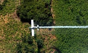 An plane sprays coca plants in El Catatumbo, Norte de Santander department, Colombia.