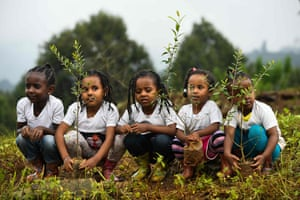 Ethiopian girls take part in a national tree-planting drive in the capital, Addis Ababa