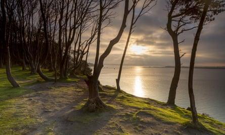 The south shore of Brownsea Island, Dorset.