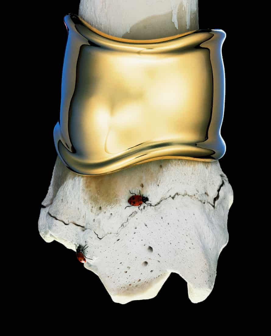 An Elsa Peretti gold cuff modelled on a bone, with ladybird. Hiro never used digital enhancement to produce his sublime images.