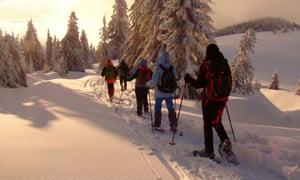 Romania - five people snowshoeing