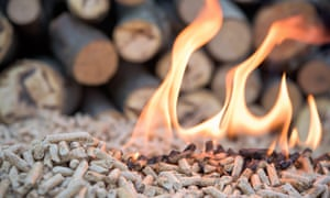 Wood pellets will be counted as renewable energy, the EPA administrator, Scott Pruitt has announced, even though his own scientific board is still working on its advice on wood burning's environmental impact.