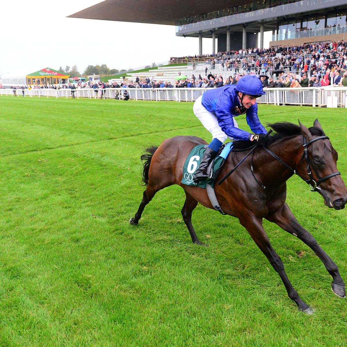 Irish Derby to remain at the Curragh in 2018 - The Irish Times