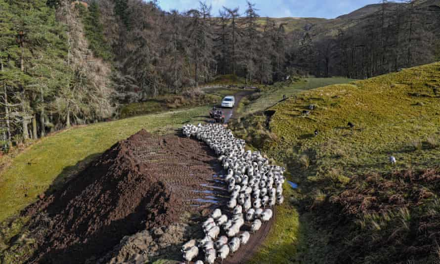 Bragleenmore farm in Oban, Scotland. Hill farmers face an uncertain future as Brexit looms and sheep farmers are concerned about post-Brexit trade if UK market becomes filled with lower price produce