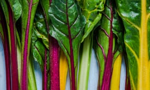 'If you are going to sow one more thing this summer, let it be Swiss chard.'