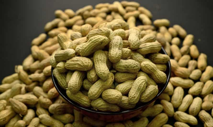Peanut oral immunotherapy involves eating small, gradually increasing amounts of peanut protein daily.