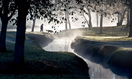 A dog and its owner walk in Craig regional park in Fullerton, California.