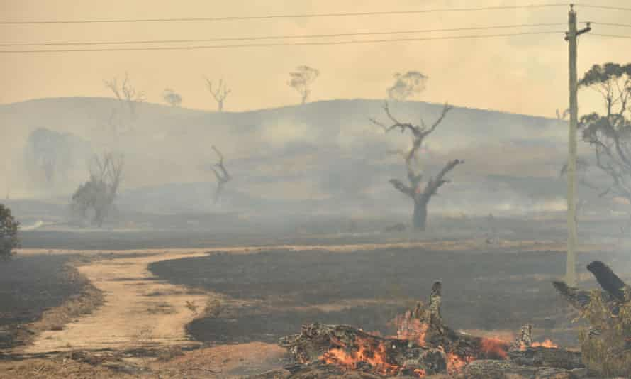 The remains of a bushfire near the town of Bumbalong, south of Canberra.