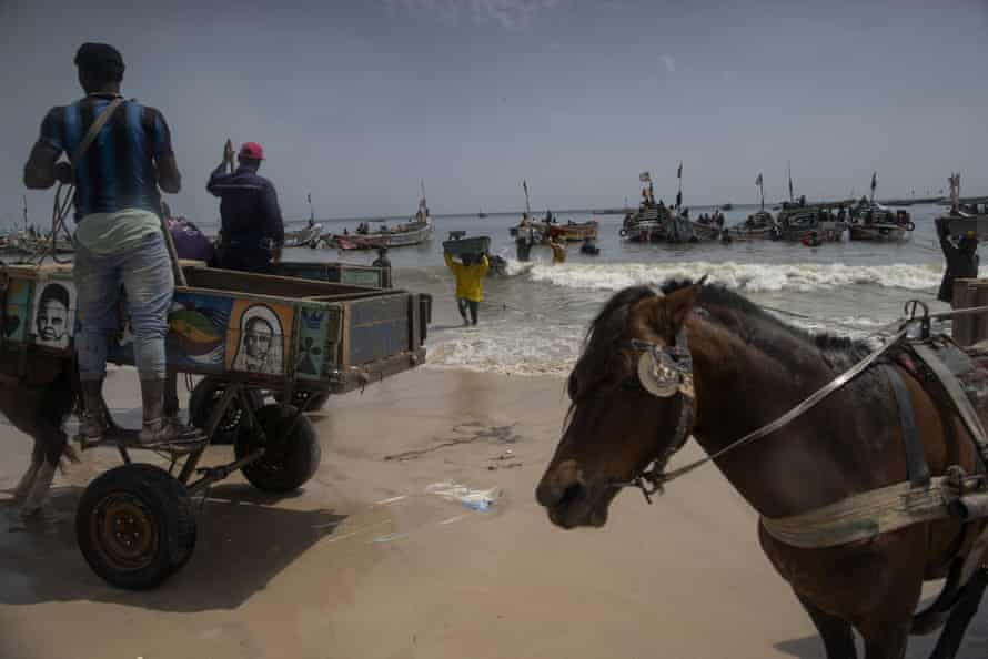 Men wait to load their horse-drawn carts with the catch brought by fishermen at Bargny beach