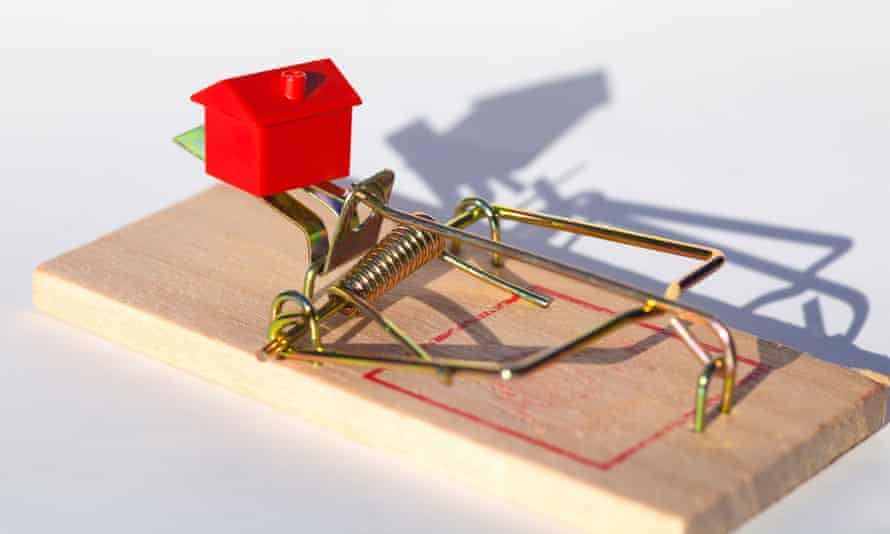 Mouse trap with a little house