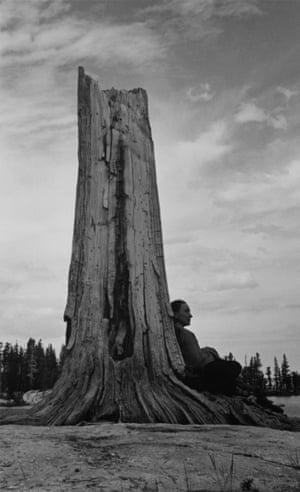 Georgia O'Keeffe and Tree at Yosemite National Park, California, 1938