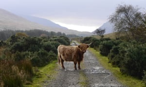 Wild forgotten trails … Mull