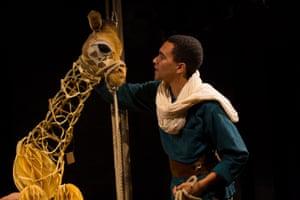 A trafficking story? … Zeraffa Giraffa.