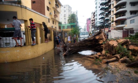People make their way past a fallen tree and flooded street in Santo Domingo after Tropical Storm Laura.