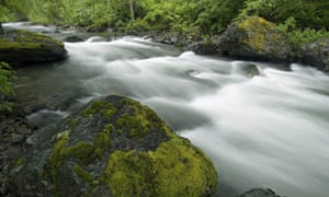 A cascade within Sucker Creek inside the Siskiyou National Forest in southern Oregon.