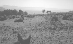 Landscape around Gonderoch Mariam, near to where Aida Edemariam's grandmother Yetemegnu grew up