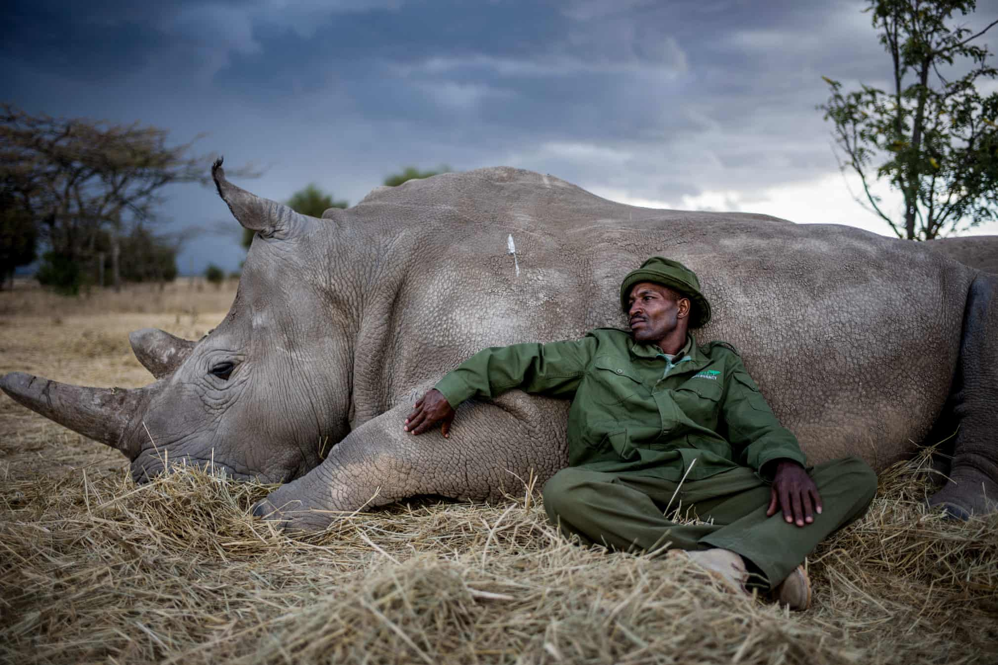 Guardian 20 photos of the week. - Page 6 5976