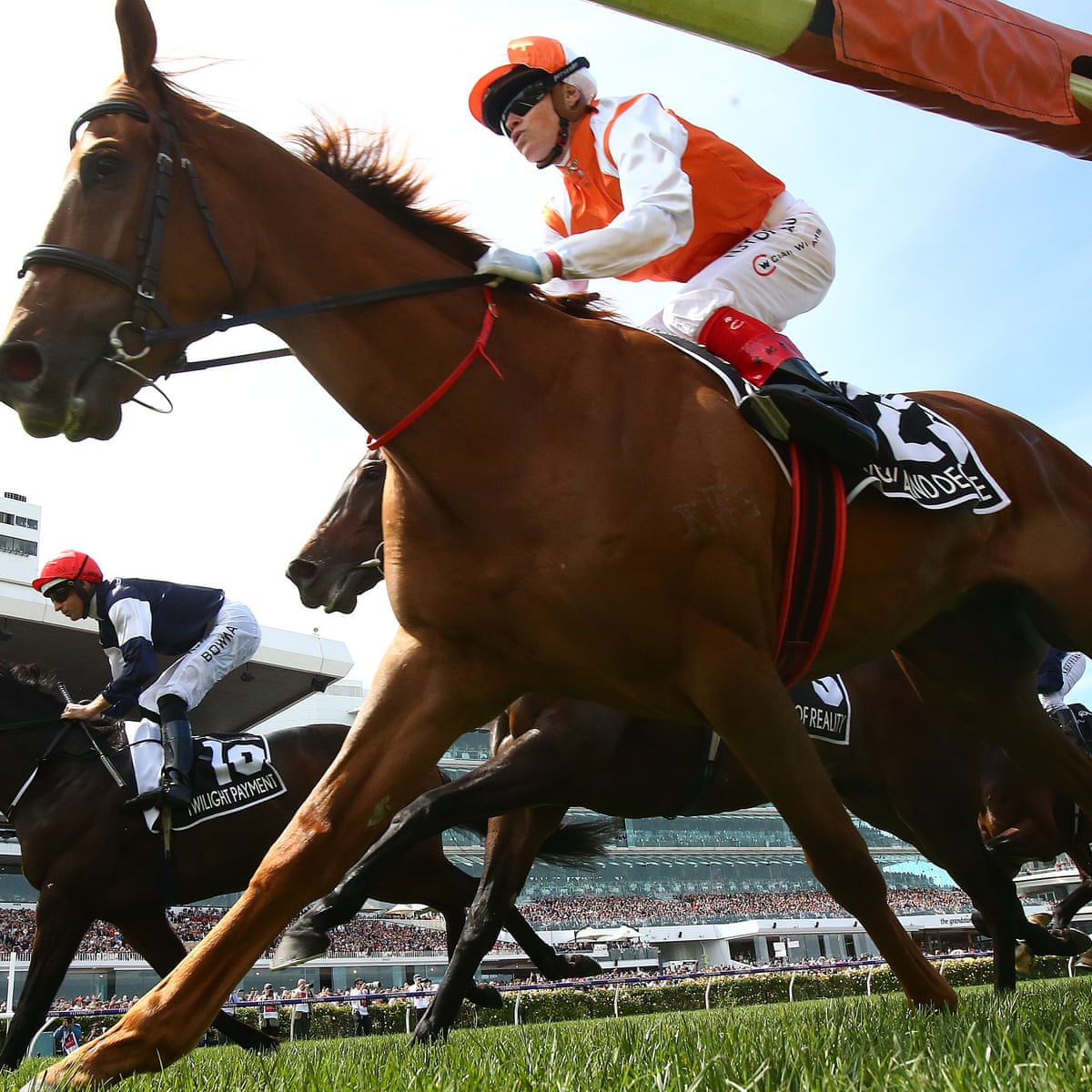 Melbourne cup betting uk lucky 15 betting