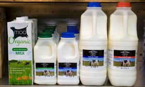 Organic milk contains 40% more linoleic acid, and carries slightly higher concentrations of iron, vitamin E and some carotenoids, but not as much iodine and selenium as conventional milk.