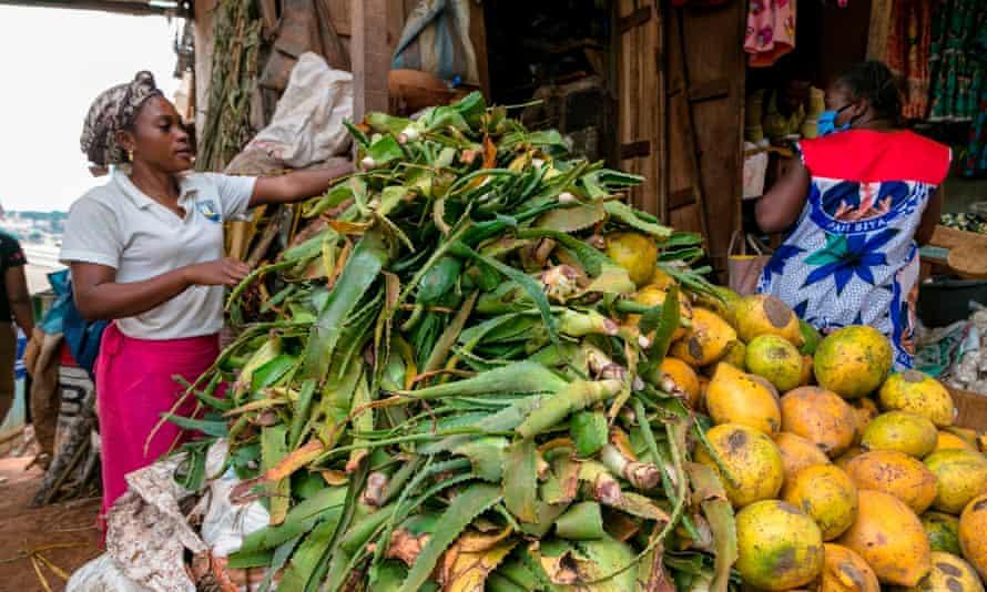 Market in Yaoundé, Cameroon, April 2020.