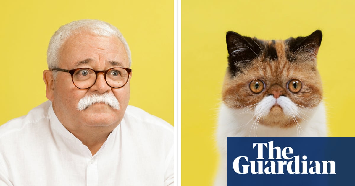 Purrfect match: cats and their human doubles