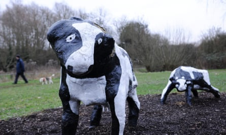 A dog walker passes The Concrete Cows sculpture