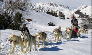 Dog sledding, Peyragudes, France