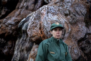 Dr Christy Brigham, who is responsible for the welfare of the ecosystems in Sequoia and Kings Canyon national parks.