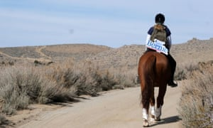 Cynthia Rifi and her horse canvass for Senator Bernie Sanders in Reno ahead of the Nevada Democratic caucuses on Saturday.