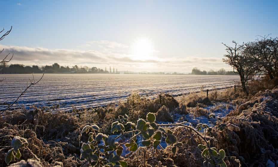 Bleak scenes … frozen Suffolk fields in Midwinter.
