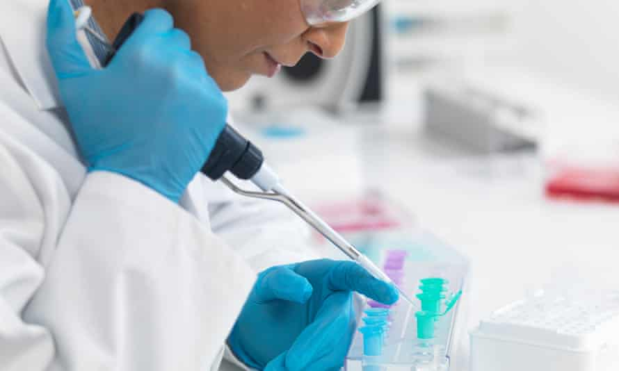 Scientist pipetting DNA samples for testing