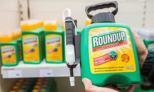 Germany to ban use of glyphosate weedkiller by end of 2023