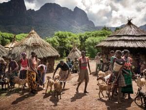 Village women with their goats, Uganda