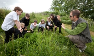Pupils of the school search for the small blue butterfly with dan danahar
