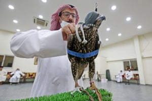 A falcon is inspected by a potential buyer at an auction in Kuwait City, Kuwait