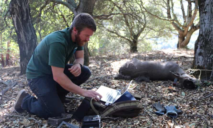 Wildlife biologist Richie King checks a camera trap.