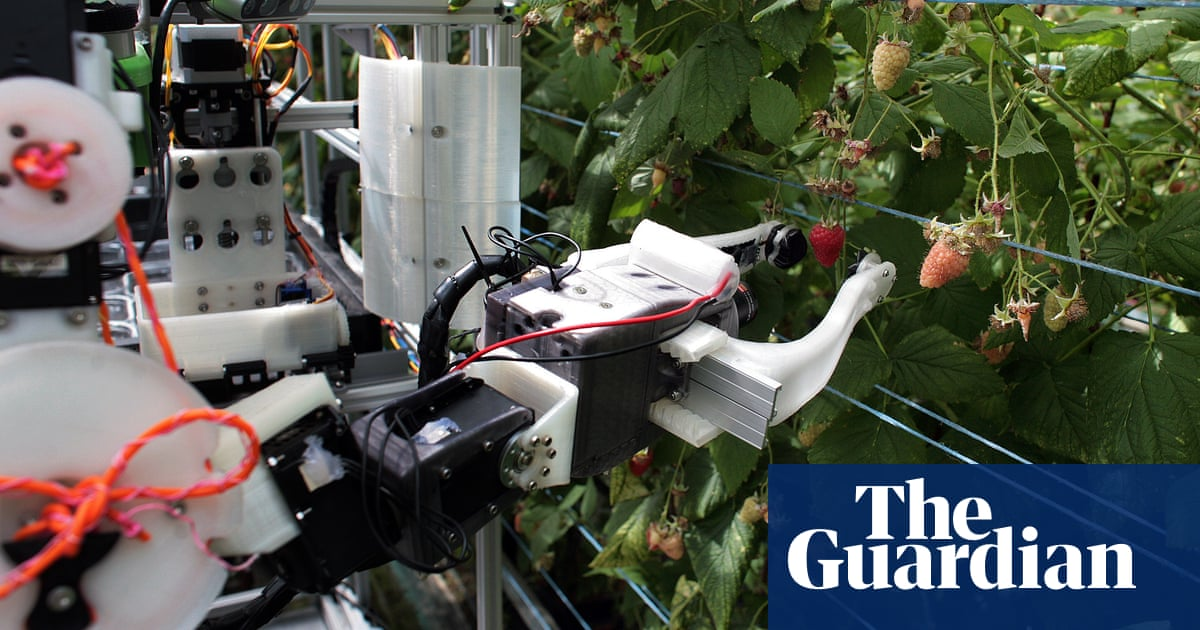 Robocrop: world's first raspberry-picking robot set to work