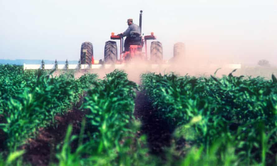 Crop-spraying in Kentucky. Photograph: Alamy