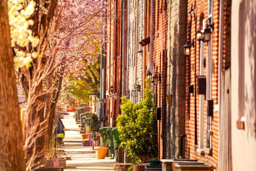 A Baltimore neighborhood is lined with brick houses and trees.