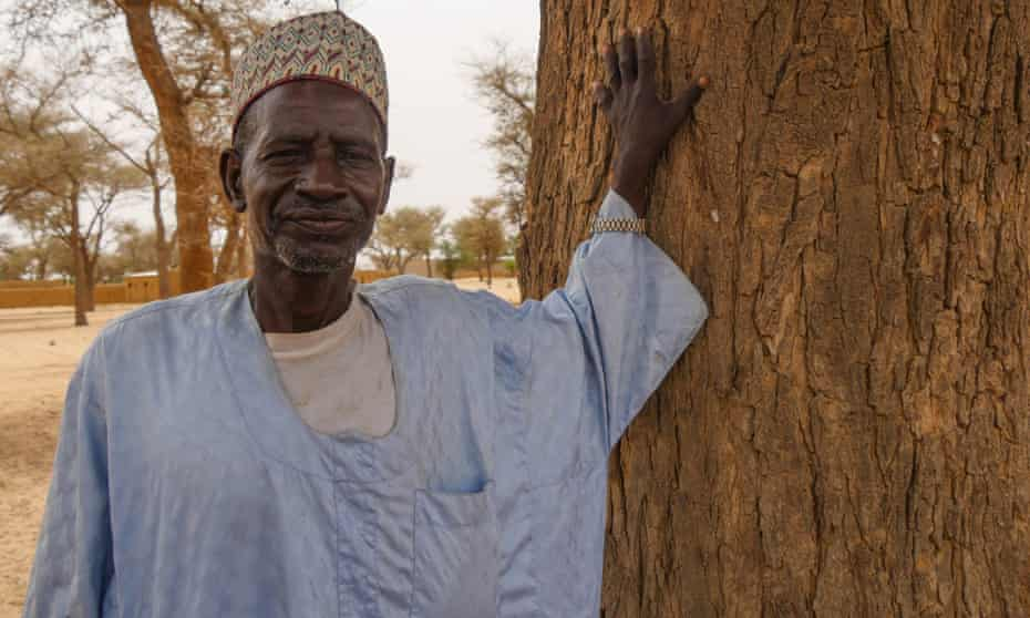 Souley Cheibou with an old gao tree he remembers from when he was a child