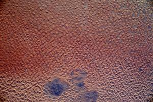 Illizi, Algeria This is a dune field in the Sahara Desert crossed by the border of Algeria and Tunisia.