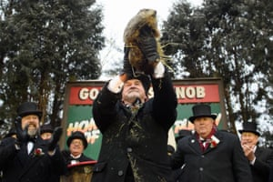 """""""Punxsutawney Phil"""" looks for his shadow at the annual Groundhog Day ritual"""