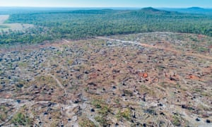 Land clearing in Wombinoo in Queensland, Australia. The aftermath of land clearing in 2016 triggered intervention from the federal government.